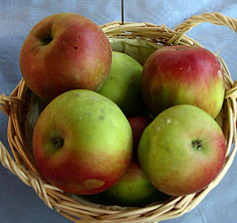 jabuke i srce
